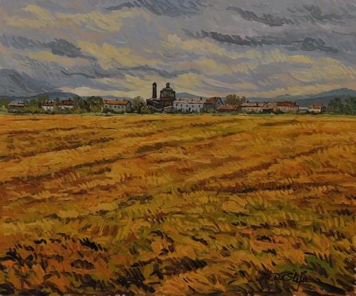 Risaia a San Silvestro (VC). olio su tavola cm 50×60
